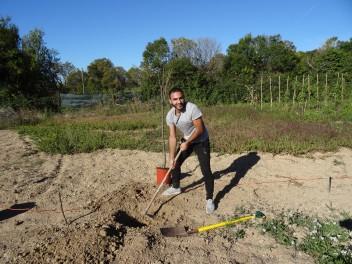 Artur à l'oeuvre pour la plantation du cerisier