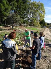Hervé le Jardinier, explique attentivement les étapes de plantations à respecter
